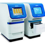Palnt Based Research - QPCR 12